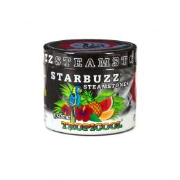 Starbuzz steam stones goût Tropicool